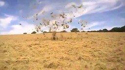 Воздушная воронка в поле смотреть видео прикол - 0:10