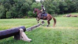 Смотреть Мастерский прыжок коня