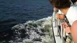 Смотреть Катер против танкера