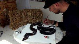 Змея на бумаге будто живая! смотреть видео - 2:23