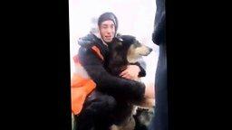 Смотреть Ребята спасают собаку