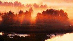 Смотреть Рассвет на реке Воронеж