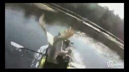 Смотреть Гусь атакует лодочника