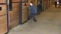 Мальчик против упрямого коня смотреть видео прикол - 0:32