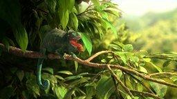 Смотреть Мультик про жадного хамелеона
