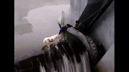 Смотреть Рискованное спасение собаки