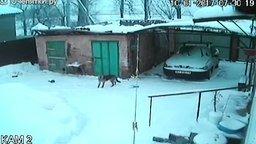 Смотреть Снег прогнул крышу гаража