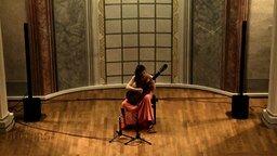 Смотреть Девушка и испанская гитара