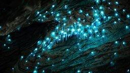 Смотреть Волшебство огней в пещере