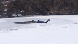 Смотреть Парень спас собаку из ледяной воды