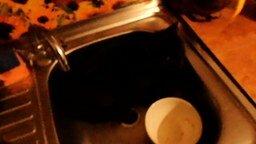 Кот пришёл на водопой смотреть видео прикол - 1:26