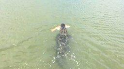 Смотреть Аллигатор украл улов у рыбака