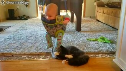 Ребёнок - игрушка для кота смотреть видео прикол - 0:23
