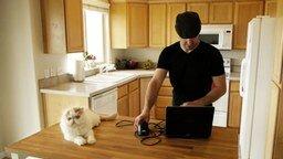 Смотреть Хотите размножить своего кота?