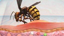Смотреть Самые ядовитые насекомые