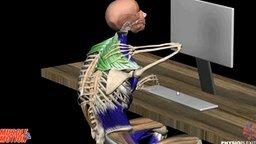 Смотреть Почему болит спина?