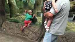 Смотреть Мальчик играет в прятки с обезьянкой