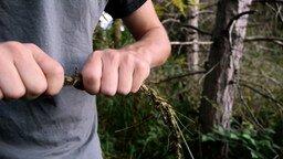 Плетём верёвку из травы
