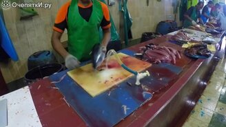 Смотреть Мастерская разделка тунца