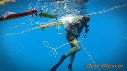 Смотреть Подводная охота на морского окуня