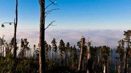 Смотреть Чудесная красота природы
