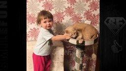 Свежие и смешные до слёз приколы с кошками смотреть видео прикол - 5:24