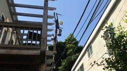 Шарик налетел на провода