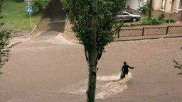 Смотреть Самый отважный пешеход против наводнения
