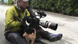 Котёнок - верный друг оператора смотреть видео прикол - 1:36