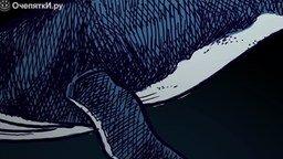 Смотреть Почему киты вырастают настолько большими?