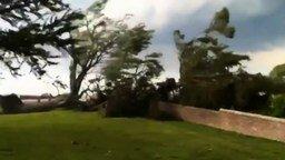 Смотреть Вот так ветрище!