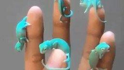 Смотреть Хамелеончики на руке