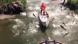 Вот так рыбалка вышла! смотреть видео прикол - 1:20