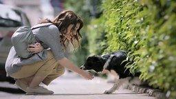 Смотреть История про девушку, собаку и её хозяина