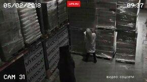 Медведь пришёл на склад смотреть видео прикол - 0:23