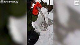 Смотреть Спас овцу из-под снега
