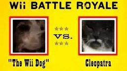 Смотреть Собака и кот - кто кого?
