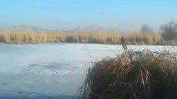 На велике по льду смотреть видео прикол - 0:31