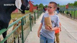 Детишки и животные в зоопарке смотреть видео прикол - 2:17