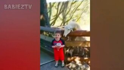 Детишки и зверушки в зоопарке смотреть видео прикол - 10:22