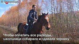 Выкупили лошадь и переехали в деревню смотреть видео прикол - 1:09