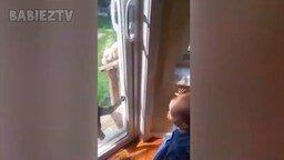 Дети общаются с животными смотреть видео прикол - 10:04