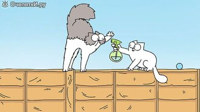 Поединки кота Саймона