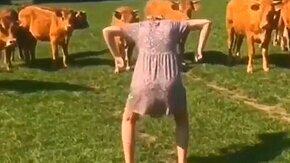 Как напугать скотину смотреть видео - 0:57