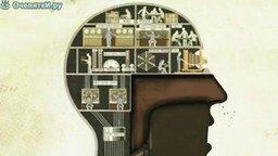 Смотреть Фабрика внутри человека