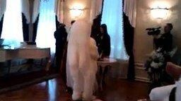 Смотреть Медвежья свадьба