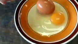 Смотреть Яйцо в яйце