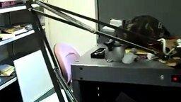 Смотреть Напугал в офисе