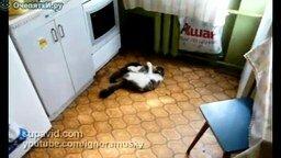 Смертельная схватка за кухню смотреть видео прикол - 0:41