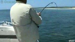из жизни рыболовов
